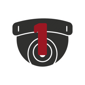 Security Camera Icon #1