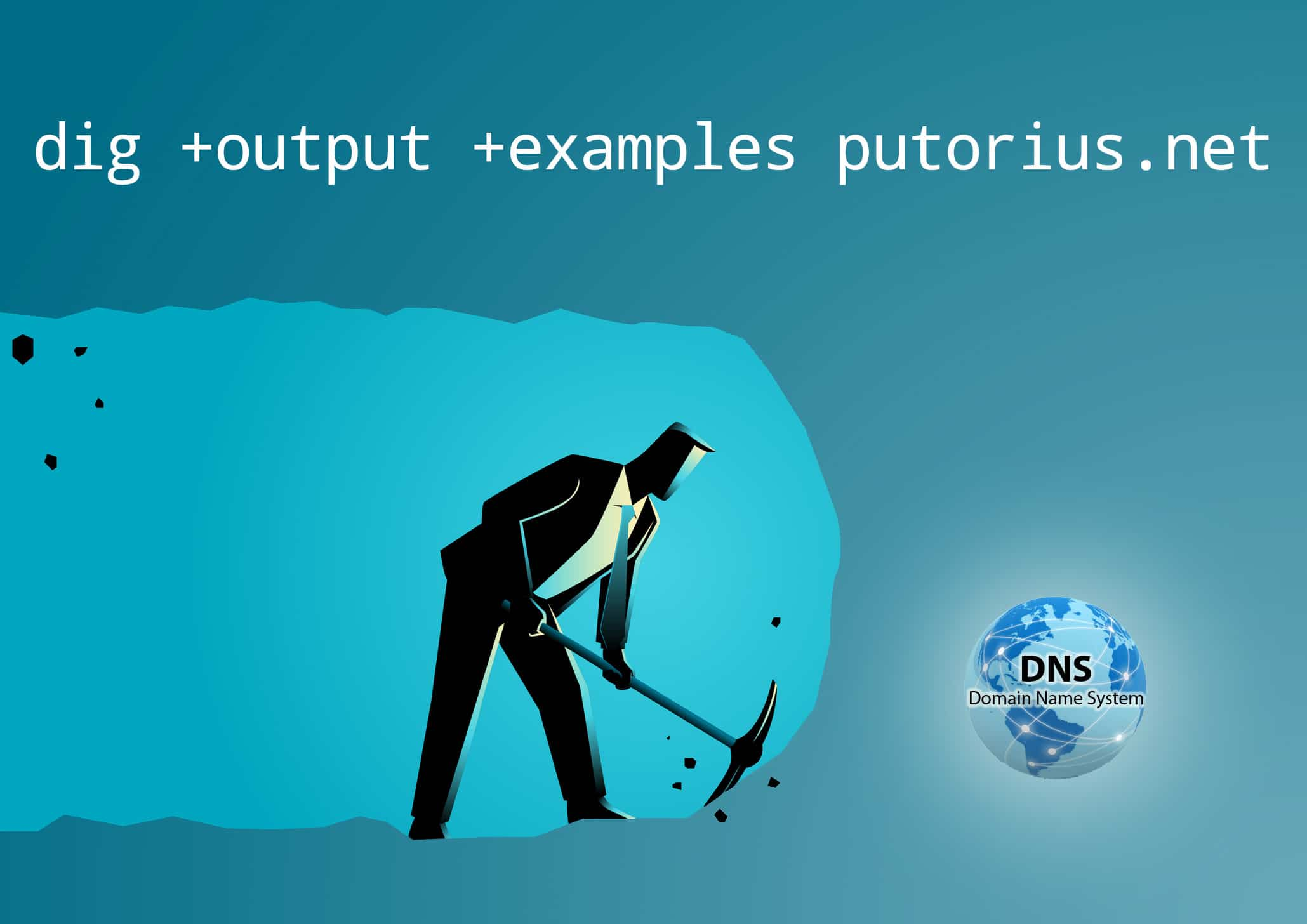 Dig - DNS Queries from the Linux Command Line - Putorius