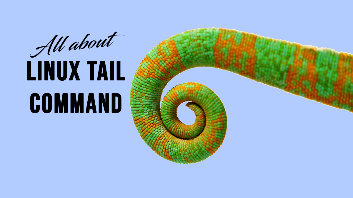 Tail Command – Output the Last Lines of Files