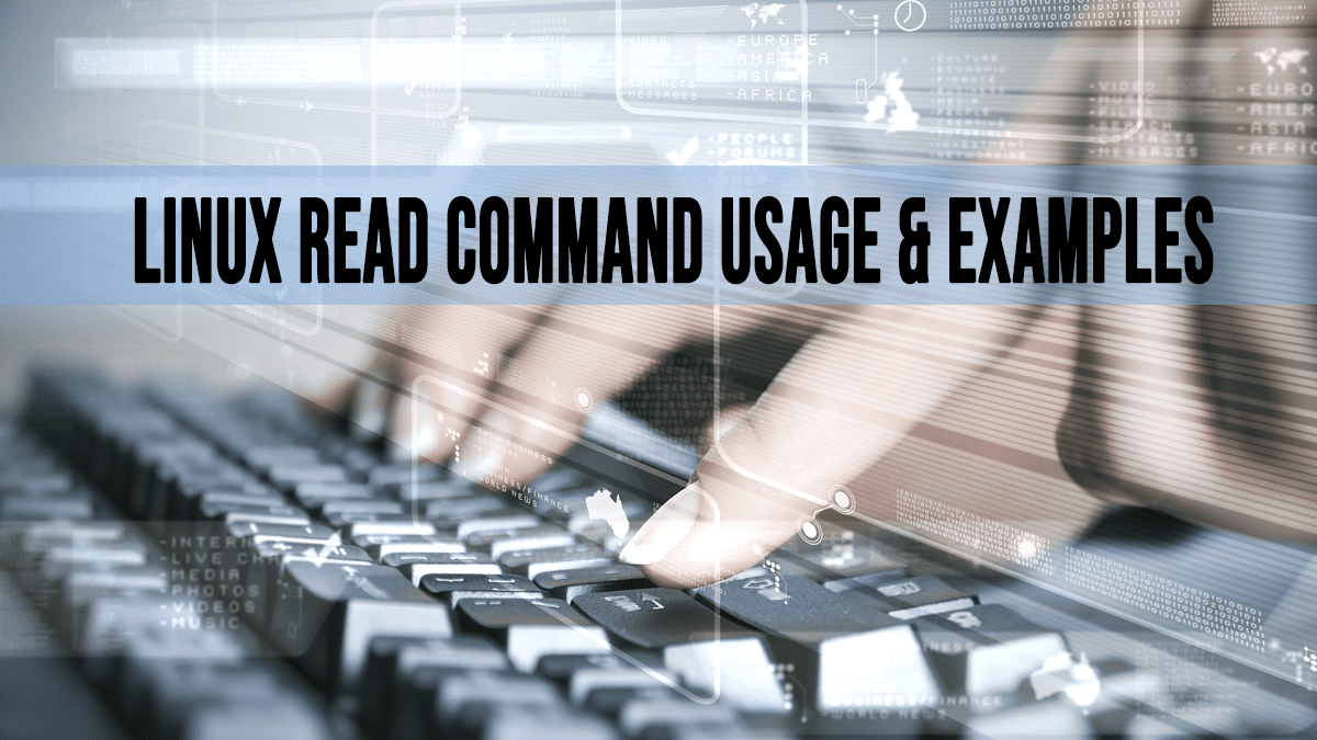 Read Command – Prompt User for Input in Bash Scripts