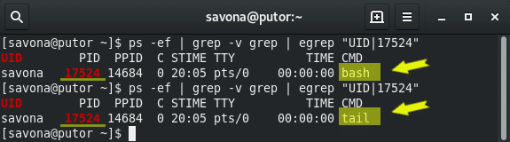 Classic Unix Utilities