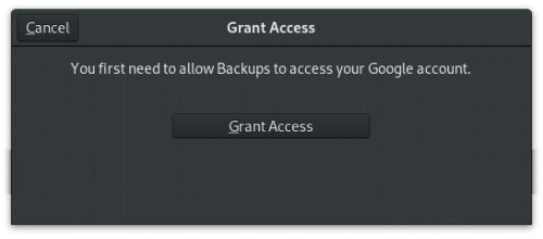 grant Google account access with deja dup