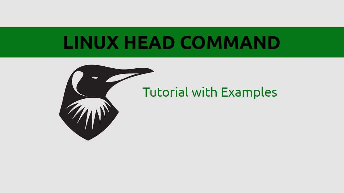 Linux head Command – Print First X Lines from File